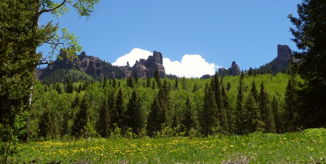 On the road from West Fork down to Middle Fork Cimarron River