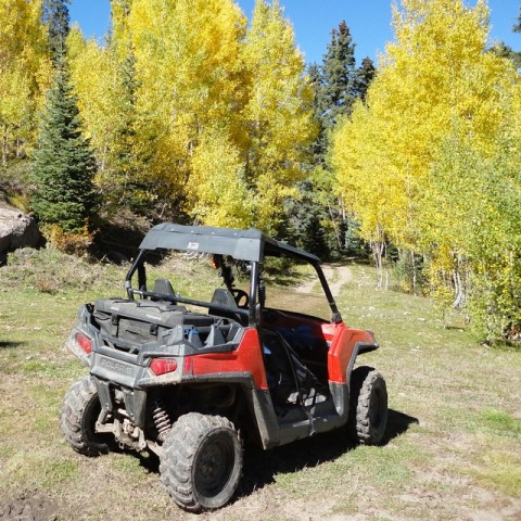 Our new (to us) Polaris RZR 800 two-seater side-by-side. Now Loretta and I can go riding together!