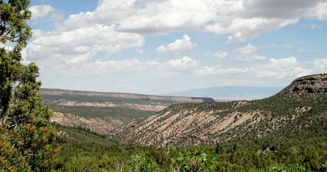 View down Dry Creek Canyon