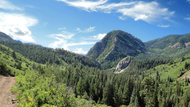 View up Cow Creek Canyon