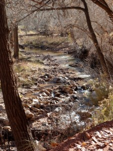 A beautiful view of Escalante Creek. All the leaves have fallen, but still it's quite mesmerizing.