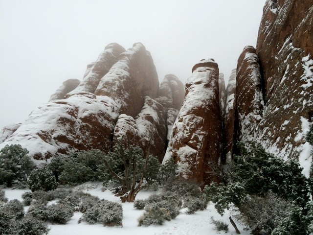 Arches National Park: rock formations with snow cover. The rocks are deep red.