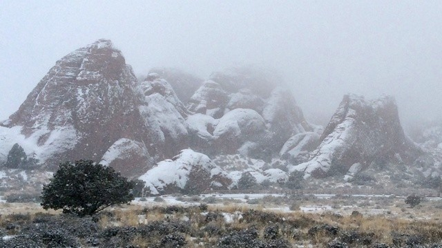 Arches National Park: Devil's Garden in the snow.